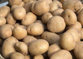 Potatoes on Market Stall, Santiago de Compostela, Galicia, Spain