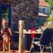 Mike y Nadeche con sus perros en el porche de su nueva casa | CEDIDA