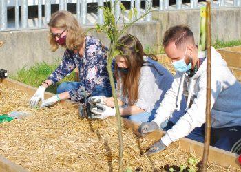Los voluntarios trabajando en el huerto