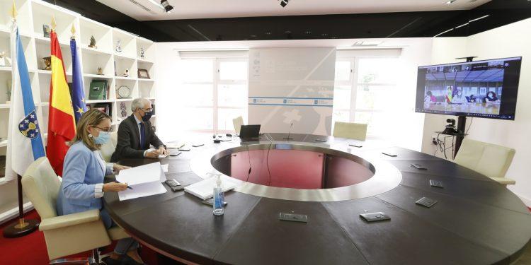 Francisco Conde durante la reunión telemática de la Mesa de Transición Justa de As Pontes