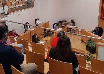 Pleno celebrado esta mañana en Narón