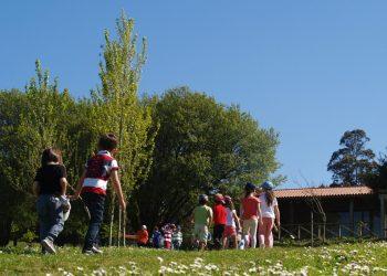 Niños en campamentos de verano
