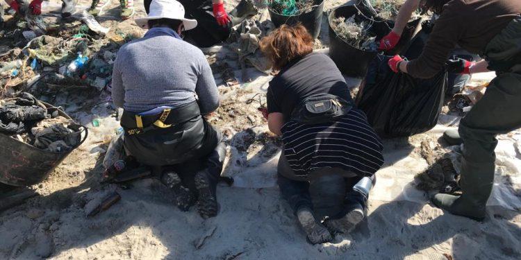 Mariscadoras de Cedeira limpian las playas | AYUNTAMIENTO DE CEDEIRA