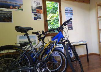 La tarifa será de 2,60 euros por persona para una bicicleta durante medio día y de 4,16 euros por el día completo