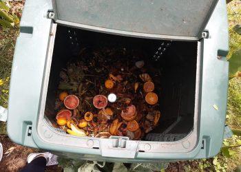 Imagen de un colector de compostaje abierto | CONCELLO DE NEDA