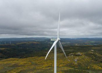 Imagen de un aerogenerador en un parque eólico | EP