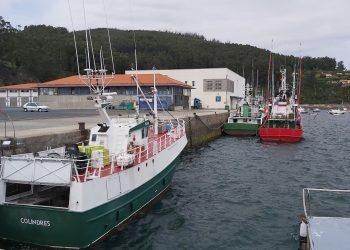 Imagen del puerto de Cedeira | CONCELLO DE CEDEIRA